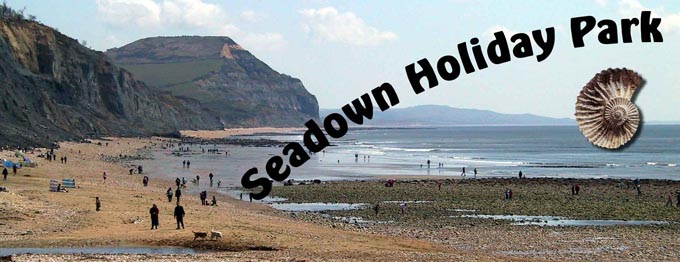 Seadown Holiday Park in located in the charming village of Charmouth near the historic town of Lyme Regis. This quite park providing both static caravan hire as well as level touring pitches.